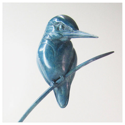 Kingfisher on Reeds by Sophie Louise White
