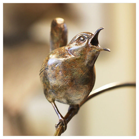 Wren by Sophie Louise White