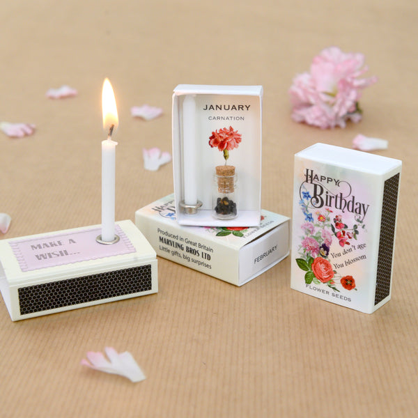 January Birth Flower Seeds And Birthday Candle Gift