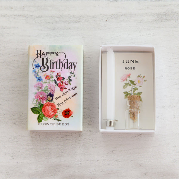 June Birth Flower Rose Seeds And Birthday Candle Gift