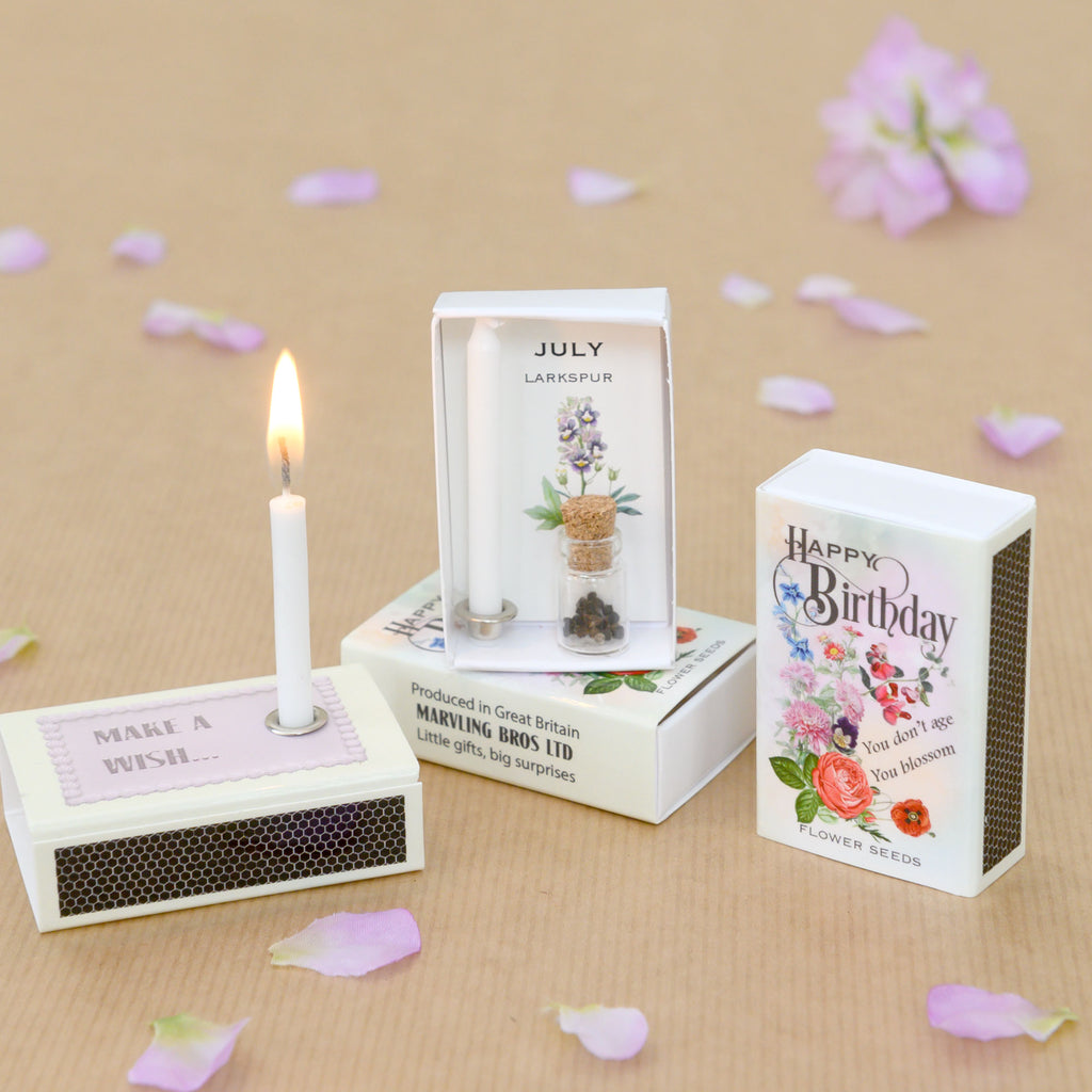 July Birth Flower Larkspur Seeds And Birthday Candle