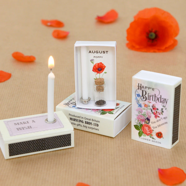 August Birth Flower Poppy Seeds And Birthday Candle