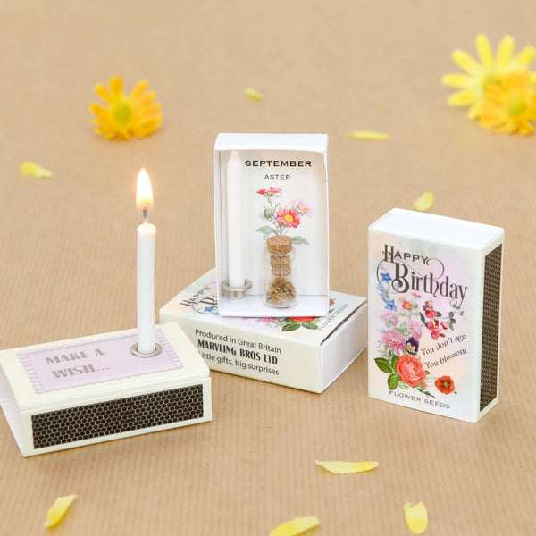 September Birth Flower Seeds And Birthday Candle Gift