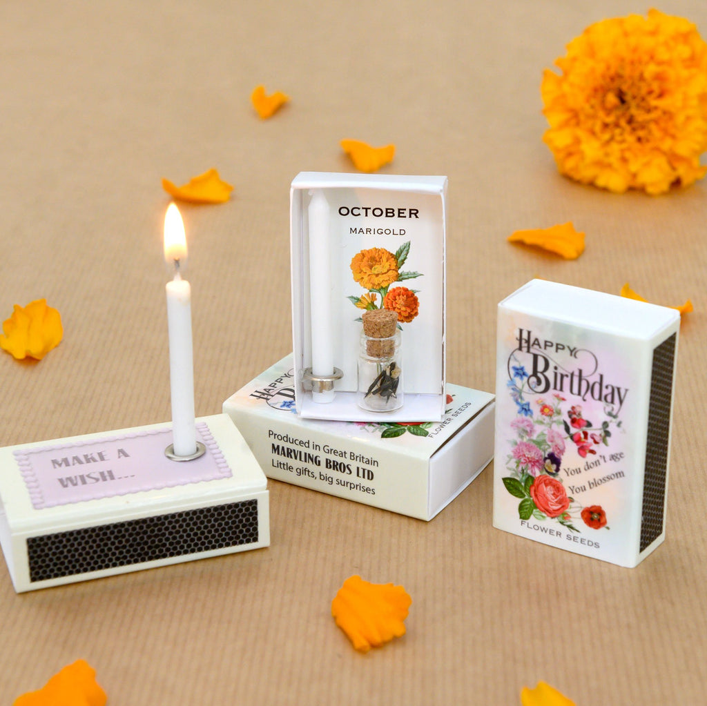 October Birth Flower Seeds And Birthday Candle Gift