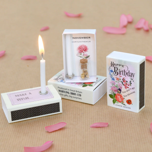 November Birth Flower Seeds And Birthday Candle Gift