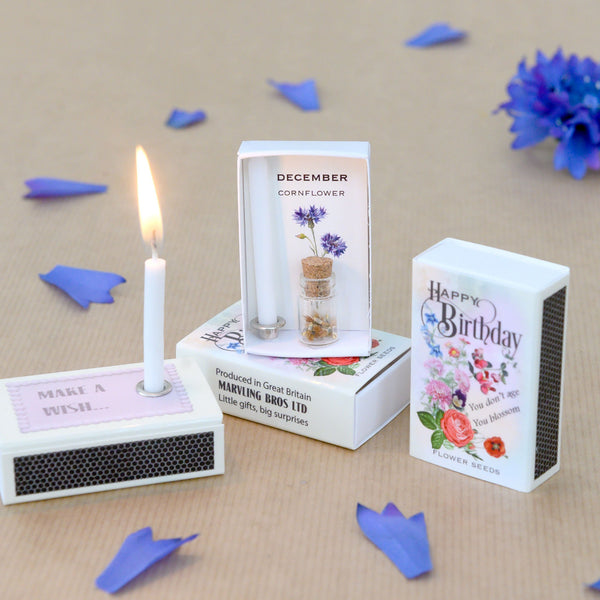 December Birth Flower Seeds And Birthday Candle Gift