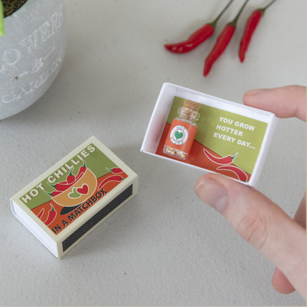 Grow Your Own Tabasco Chilli Plant Gift
