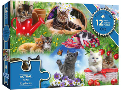 Piecing Together - 12 pc Puzzle