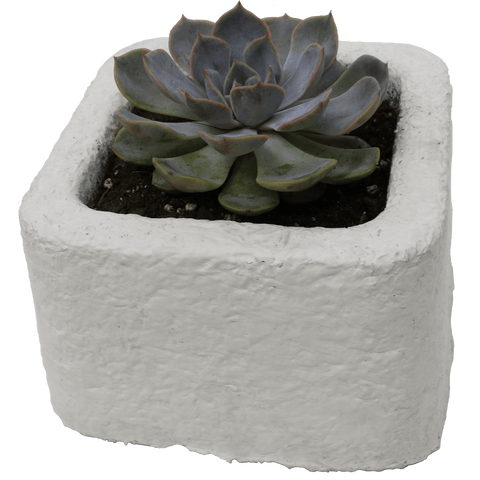 MycoComposite 029 Square Planter Pot