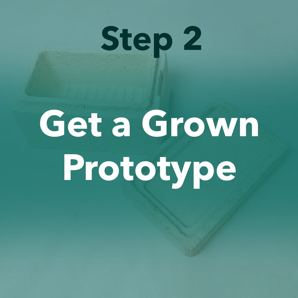 Step 2 Get a Grown Prototype