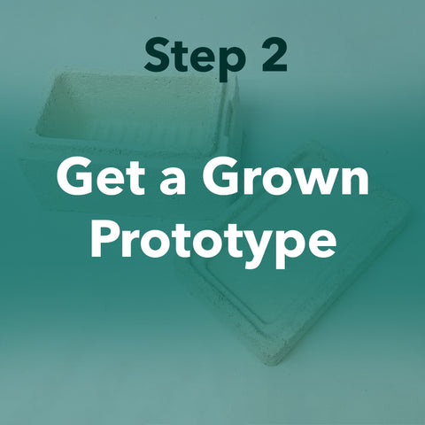 Get a Grown Prototype
