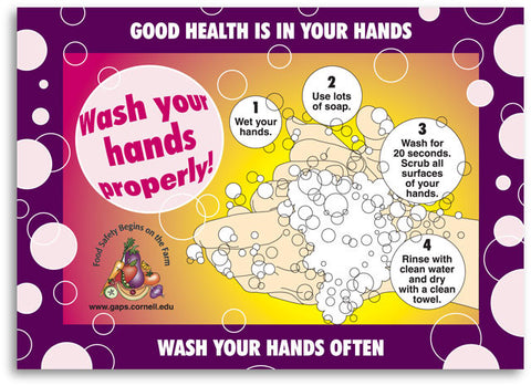 Steps For Proper Handwashing Photo Magnet (English, Spanish)