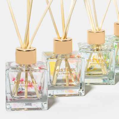 Mistral Diffusers