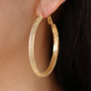 Premium CZ with Mesh Hoop Earrings