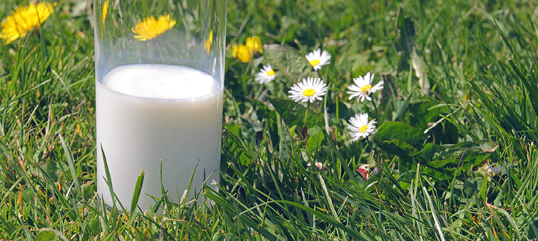 Is dropping dairy good for you?