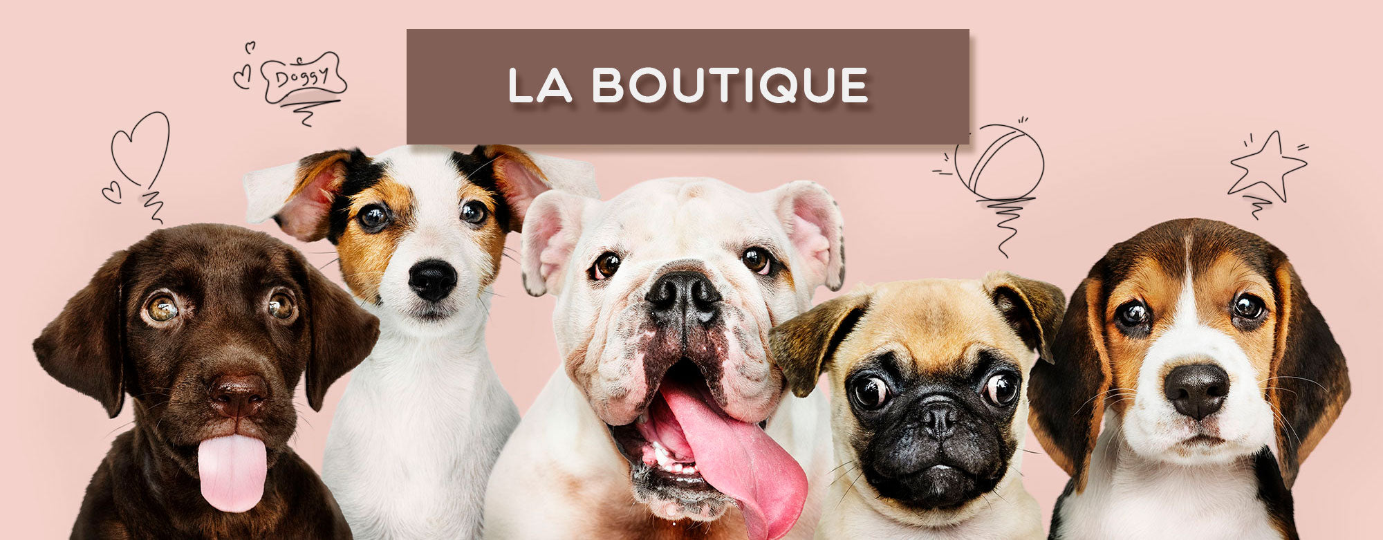 Boutique Doggy & Co