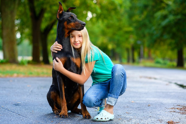 Dobermann enfant