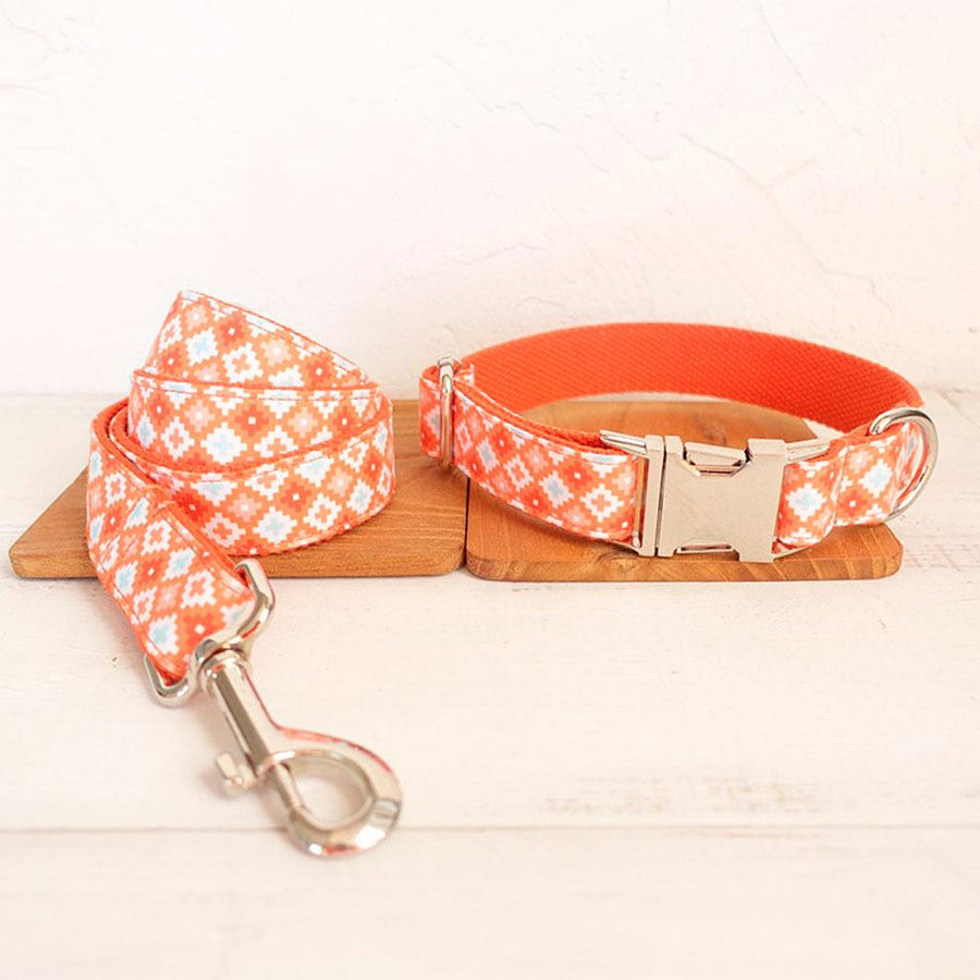 Collier pour chien Orange POP - Doggy & Co