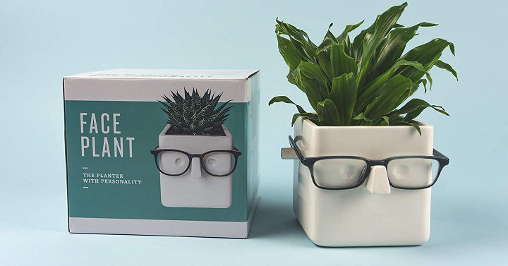 Face Planter That Holds Your Glasses Only $14.99!