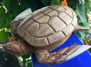 Sea Turtle Terrapin Trinket Box Hand Carved Wood