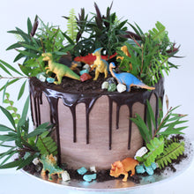 Load image into Gallery viewer, Dino/Safari/Army Cake