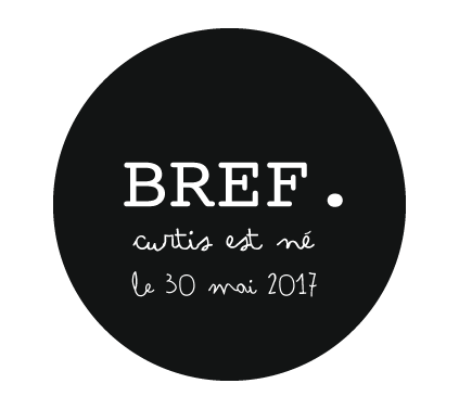 Badge annonce naissance Bref !