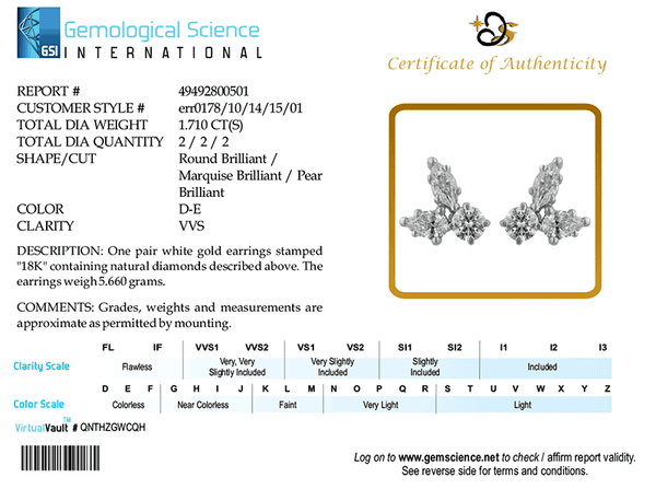 The Third party Diamond Certification Of the Quality of diamonds by Gem Science International