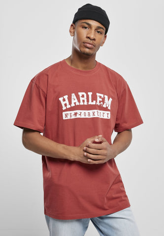Southpole Harlem new York City Tee - 3 Colors Brick Red / s T-shirt Southpole