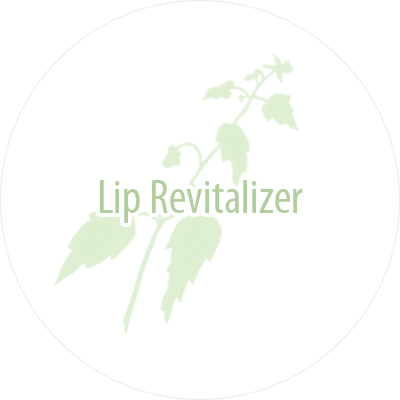 Lip Revitalizer Treatment