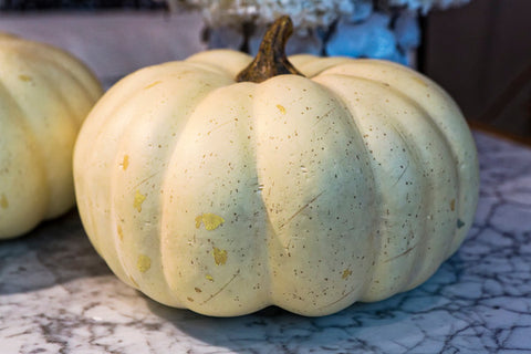 Large Pumpkins - Set of 2 - NDI