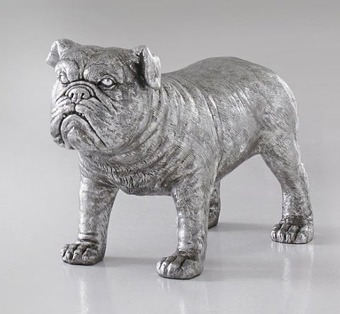 Bull Dog - Phillips Collection