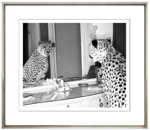 Cheetah Who Shopped - Trowbridge
