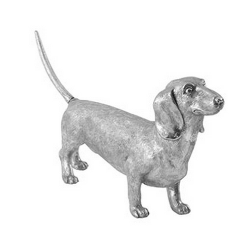 Dachshund Dog - Phillips Collection