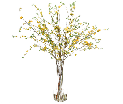 Forsythia - Natural Decorations Inc