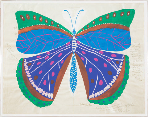Paule Marrot Butterfly, Blue - Natural Curiosities