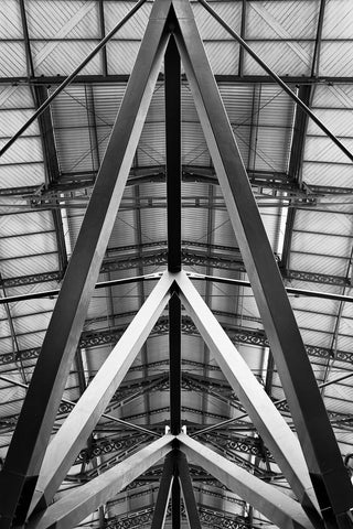 Train Shed, Monochrome, Florence, Italy Framed - Sylvie and Michael Spewak Photography
