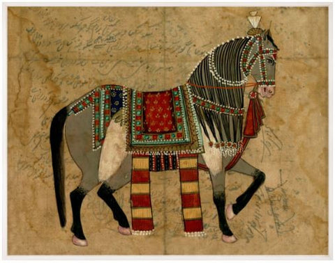 Indian Rider - Natural Curiosities
