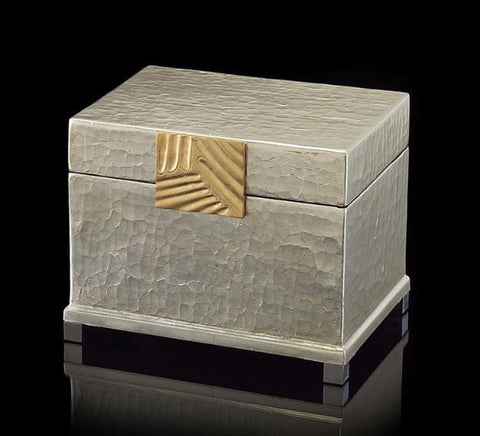 Silver-Leaf and Brass Box - John-Richard