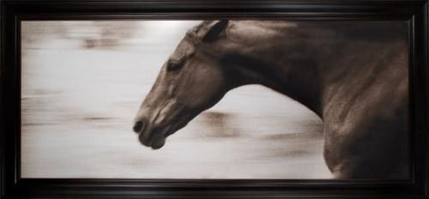 """Gallop"" from the Hyden Collection - Natural Curiosities"