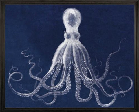 Lord Bodner's Octopus Blue - Natural Curiosities