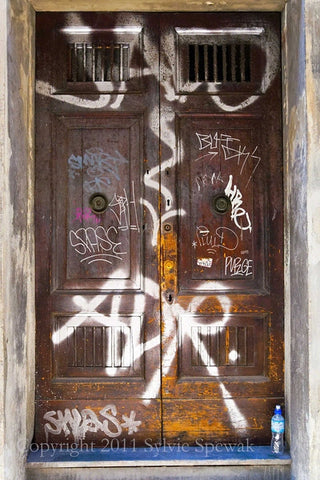 Brown Door, Grafitti Aluminum- Florence, Italy - Sylvie Rose Spewak