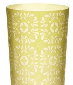 Kiwi Etched Vase - Dimond Home