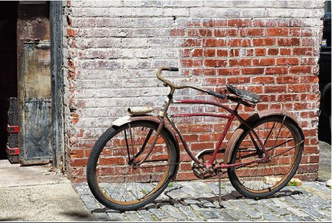 Bicycle and Brick Wall Framed - Durham, NC - Sylvie Rose Spewak
