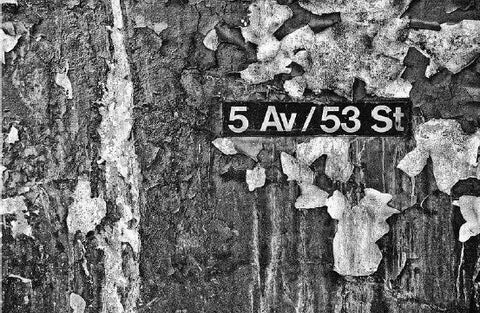 5 Av/53 St, Wall Aluminum - New York, NY - Sylvie Rose Spewak