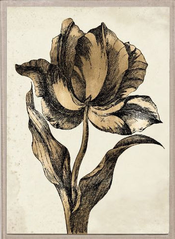 Sieger Tulips 2, Gold Leaf - Natural Curiosities