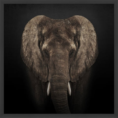 The Great Elephant - Wendover Art Group