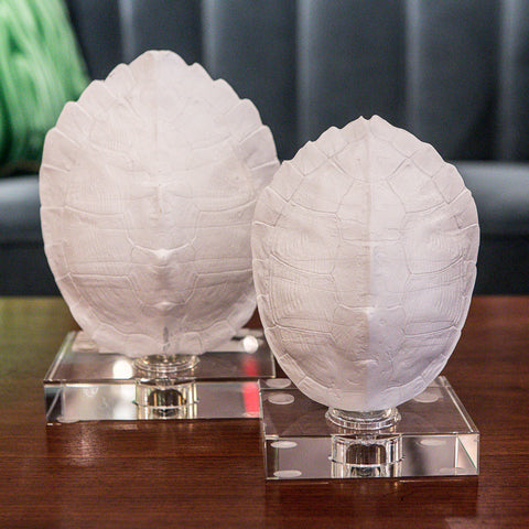 Turtle Shells on Crystal Set of 2 - Regina-Andrew Design