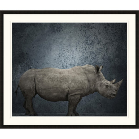 White Rhino Still Life - Wendover Art Group