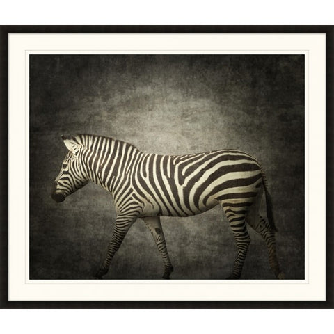 Zebra Still Life - Wendover Art Group