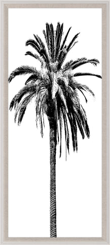 Elysian Palm Panel 4 - Natural Curiosities